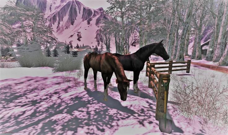 winteritallstartswithasmile1